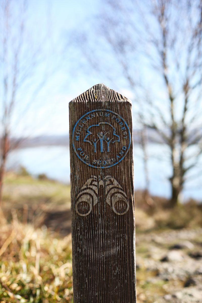 Loch-Lomond-Walks